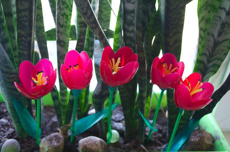 Тюльпан из пластиковых ложек